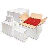 Enkelwell låda vit